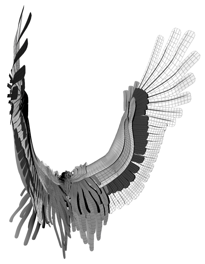 Flügelmodell